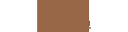 DM_Logo_brown